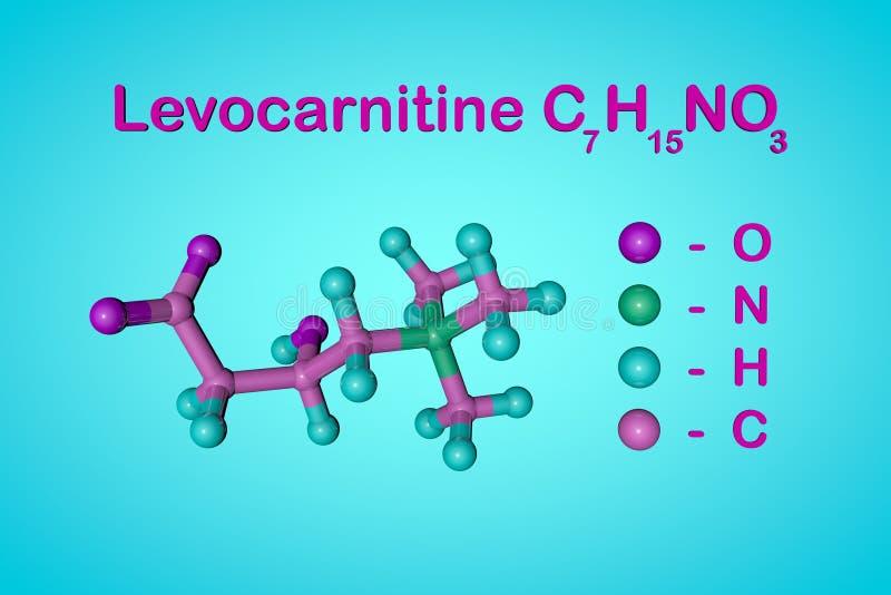 结构化学式和levocarnitine,L肉毒碱,维生素B11分子模型  E 3d 向量例证