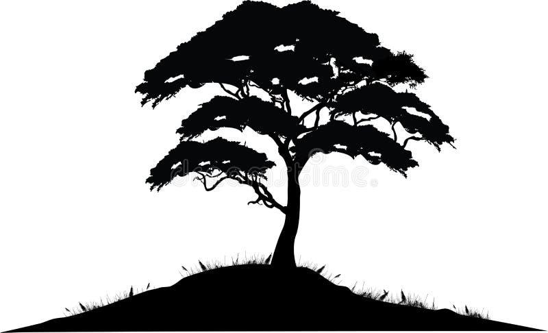 结构树剪影 皇族释放例证