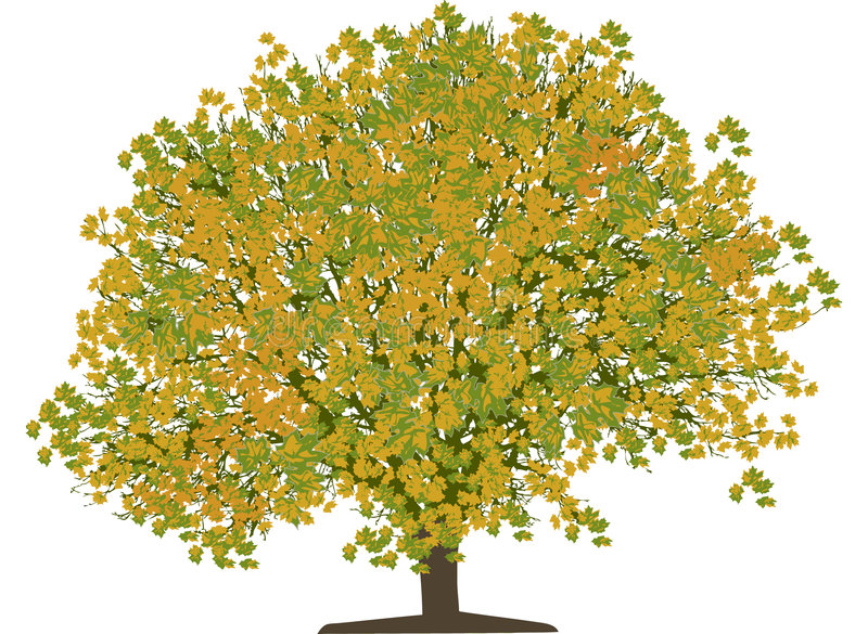 结构树向量 皇族释放例证