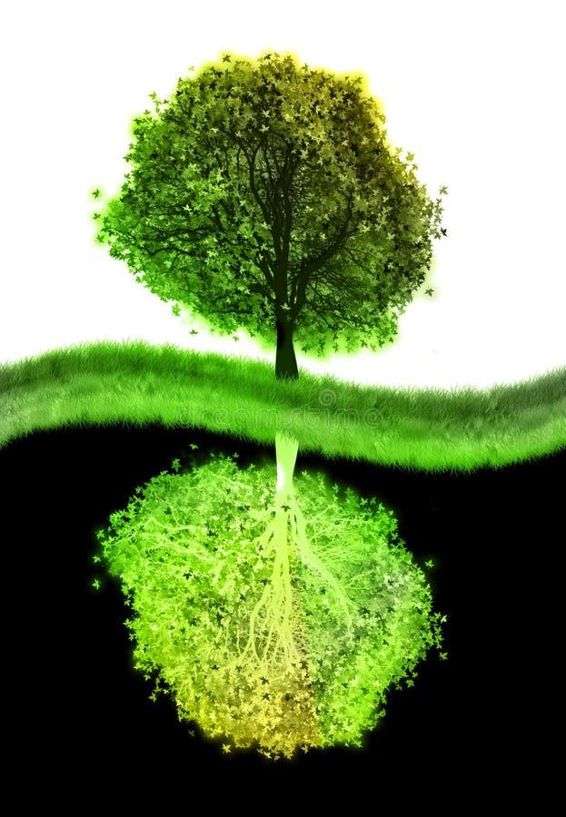 结构树杨yin 皇族释放例证