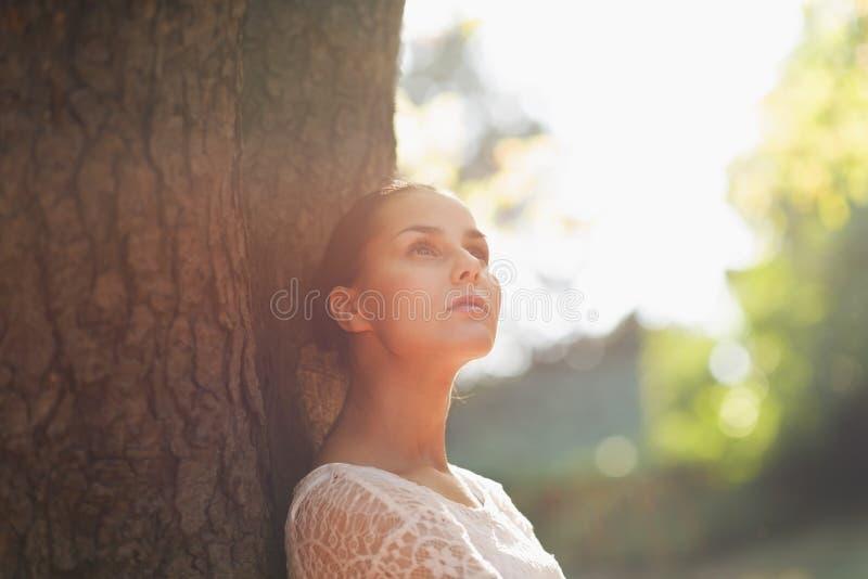结构树的周道的少妇倾斜 免版税库存照片