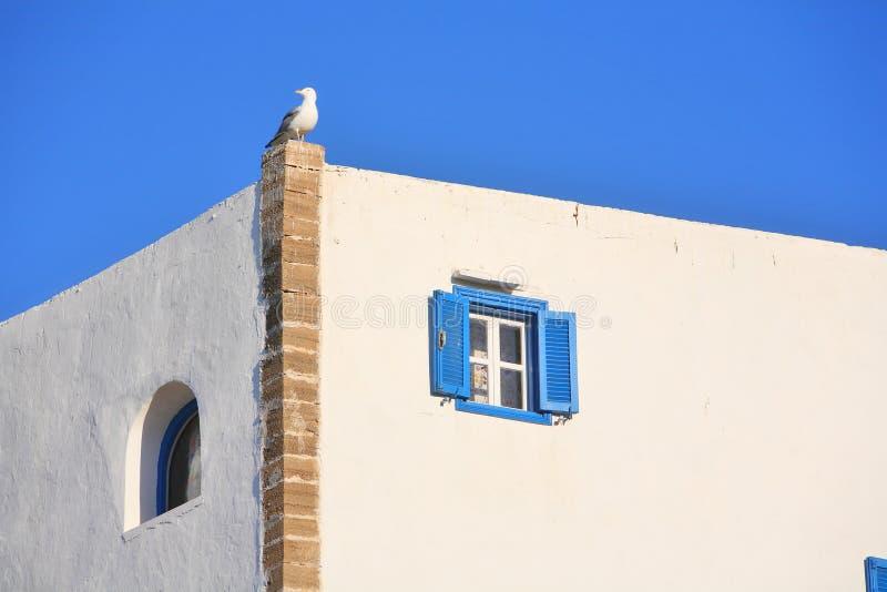 结构essaouira摩洛哥 免版税库存图片