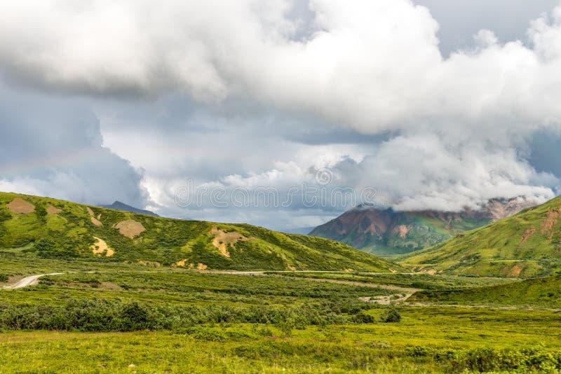 绕石渣路通过Denali国家公园 免版税库存照片