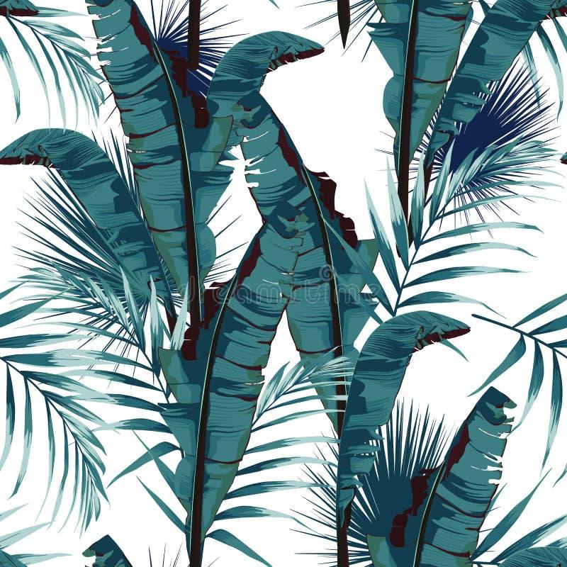 绘与棕榈香蕉叶子和植物的热带夏天无缝的传染媒介样式 向量例证