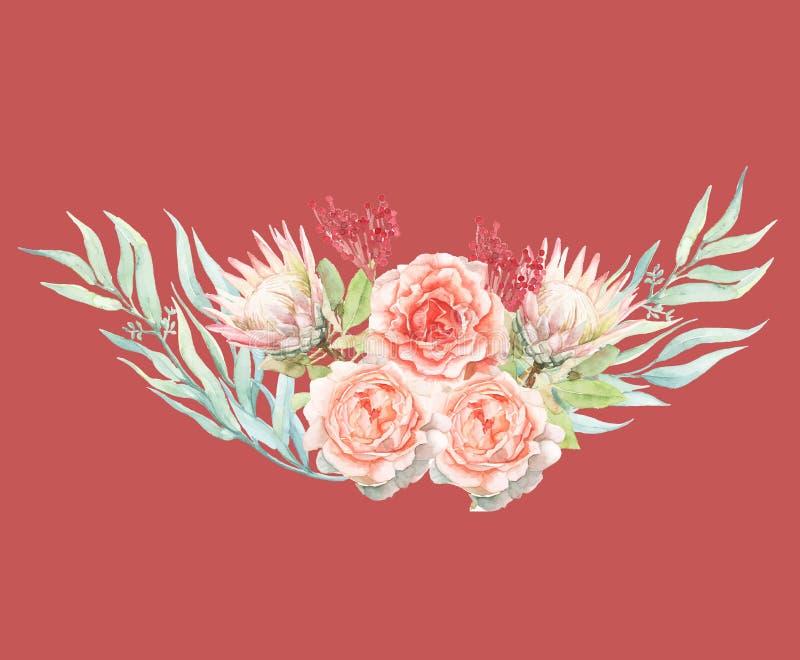 绘婚姻的装饰的梯度桃红色水彩penoy花 向量例证