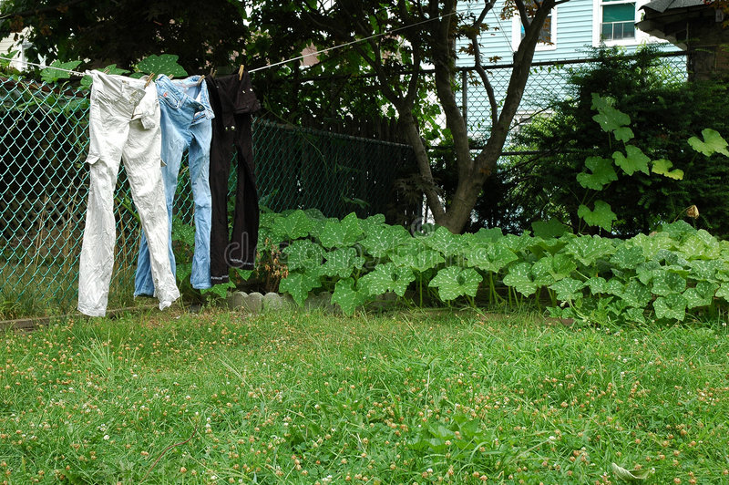 Download 给牛仔裤线路穿衣 库存图片. 图片 包括有 牛仔裤, 聚会所, 徽章, 晒衣绳, 蔬菜, 投反对票, 停止, 庭院 - 193065
