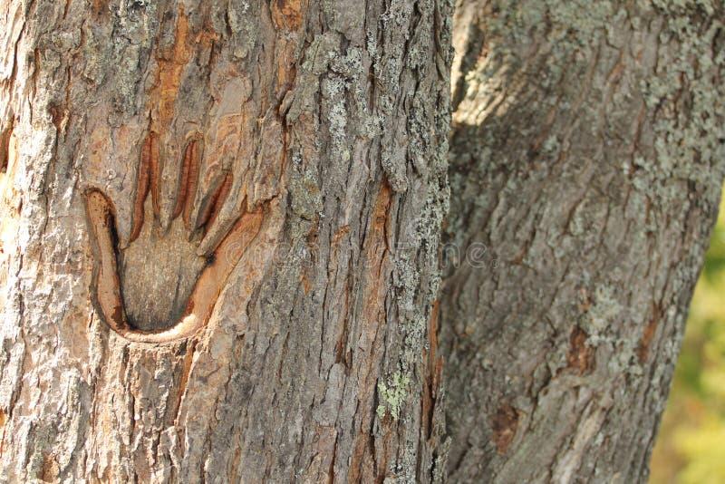 给自然留下人类印记2 免版税库存照片