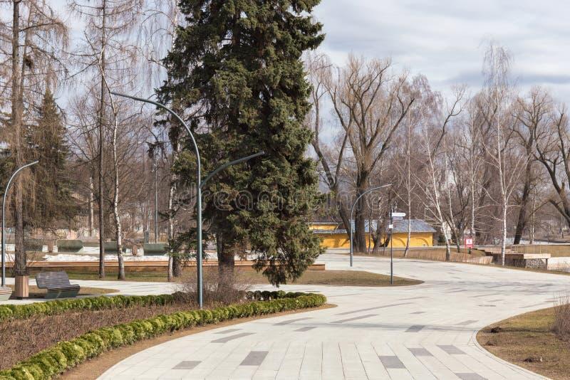 绞的小径在莫斯科城市公园  绿色云杉、原始的灯笼和绿色灌木在花床上 免版税图库摄影