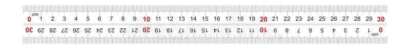 统治者双向双支持300毫米,30厘米 分裂价格是1 mm 定标栅格 皇族释放例证