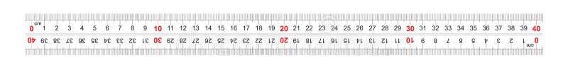 统治者双向双支持400毫米,40厘米 分裂价格是1 mm 定标栅格 向量例证