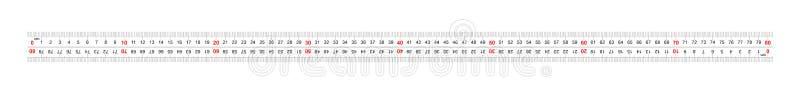 统治者双向双支持800毫米,80厘米 分裂价格是1 mm 定标栅格 皇族释放例证
