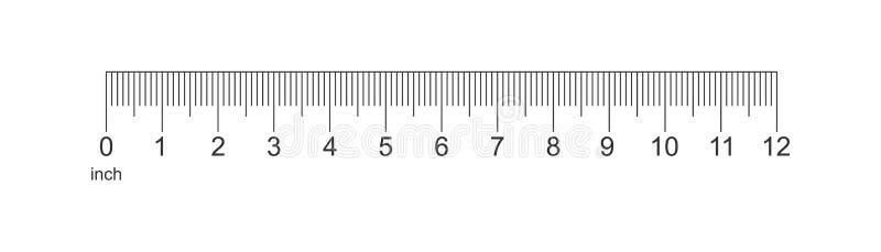 统治者在平的样式的12英寸象 米措施仪器vecto 向量例证