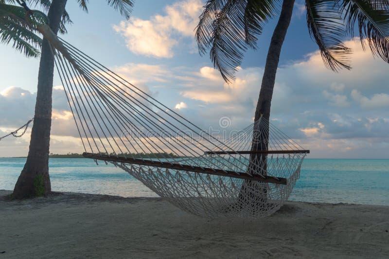 绳索吊床在棕榈树下,侧视图,Aitutaki,库克群岛 库存照片
