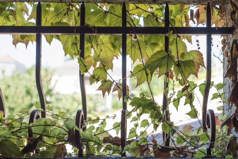 维吉尼亚小窗口铸铁条 免版税图库摄影