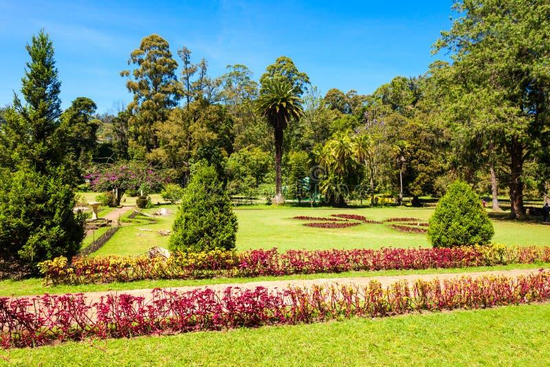 维多利亚公园,努沃勒埃利耶 库存图片