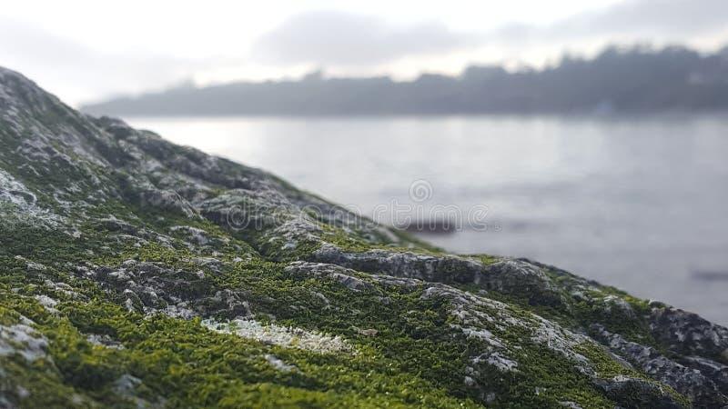 维多利亚海滩不同的观点  库存照片
