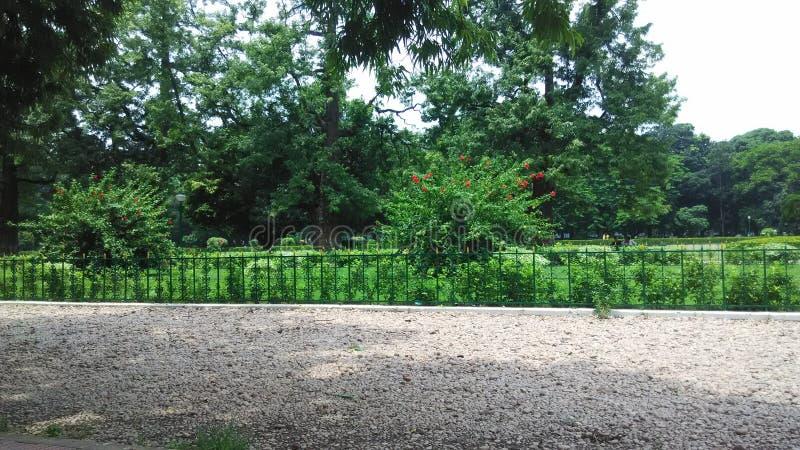 维多利亚palac在好加尔各答庭院里 库存照片