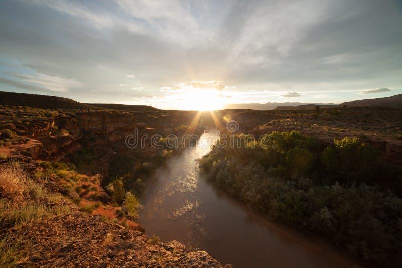 维尔京河峡谷的看法在日落的南犹他与在天空和春天绿色三角叶杨树排行的稀薄的云彩 库存照片