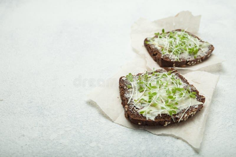 维生素三明治用黄油和微绿色 复制空间 库存照片