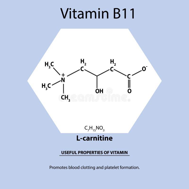 维生素B11 L肉毒碱分子化学式 维生素有用的物产  Infographics 传染媒介例证 向量例证