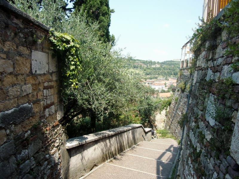 维罗纳全景-台阶跨步在城市上的小山 库存照片