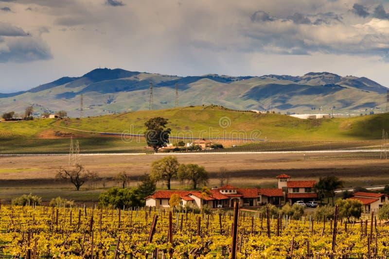 绵延山和云彩在与葡萄园的livermore加利福尼亚附近环境美化 库存图片