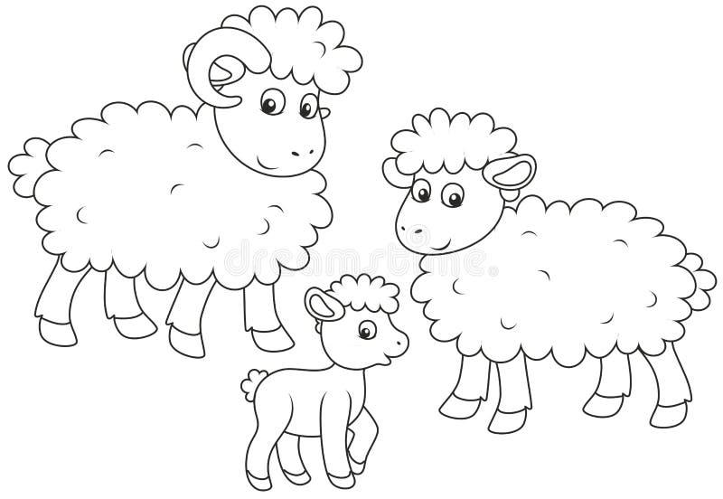 绵羊、羊羔和公羊 皇族释放例证