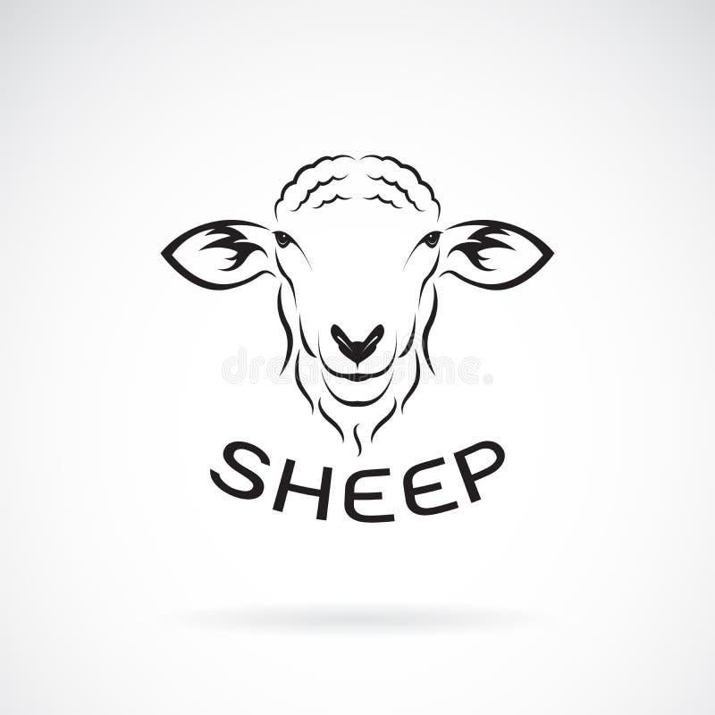 绵羊在白色背景的头设计传染媒介  通配的动物 向量例证