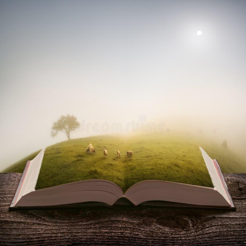 绵羊牧群在书页的  皇族释放例证