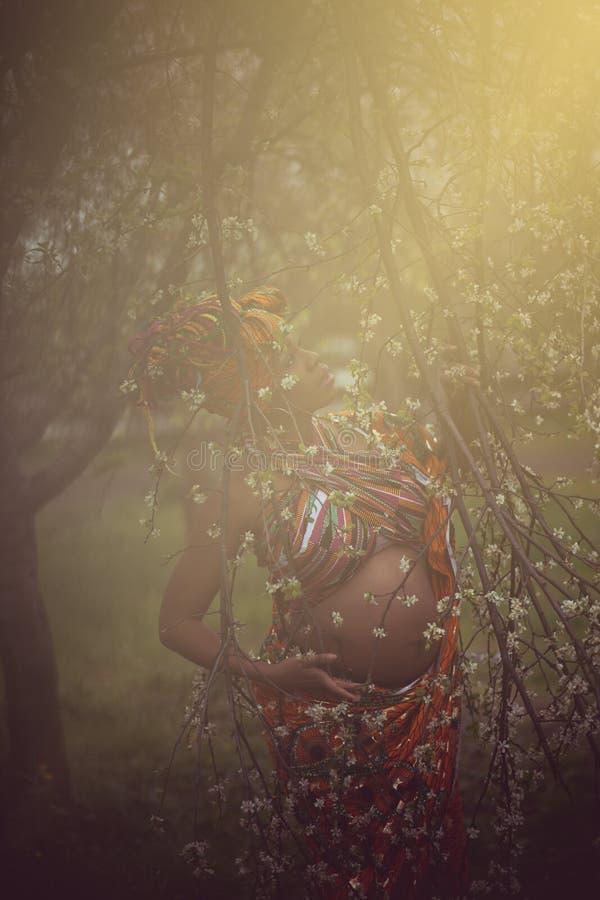 绽放作为最美丽的领域花 免版税图库摄影
