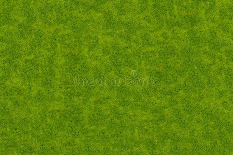 绿化与几何基本的梯度点黑暗的轻的设计的呈杂色的背景摘要样式 免版税库存图片