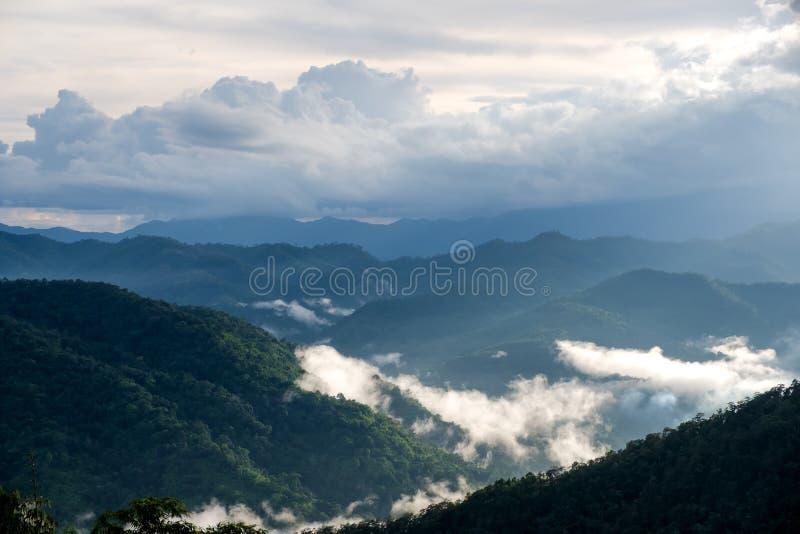 绿叶雨林小山在有雾的天有蓝天背景 图库摄影