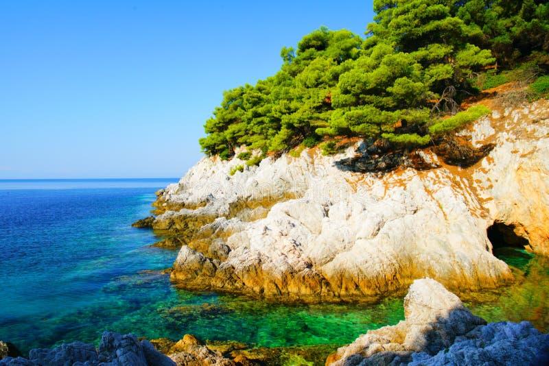 绿松石水、松树和斯科派洛斯岛,希腊岩石海岸线  免版税图库摄影
