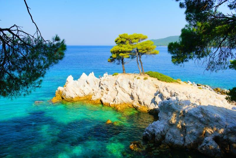 绿松石水、松树和斯科派洛斯岛,希腊岩石海岸线  库存图片