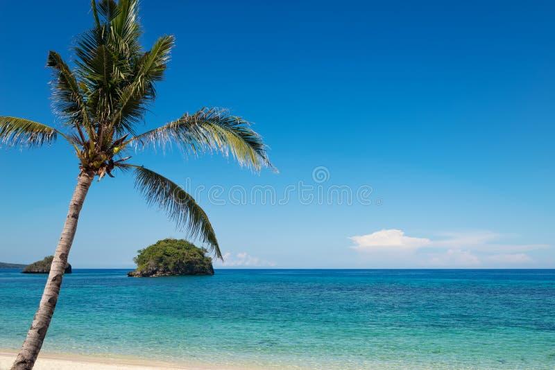 绿松石海洋水和蓝天与棕榈树 库存图片