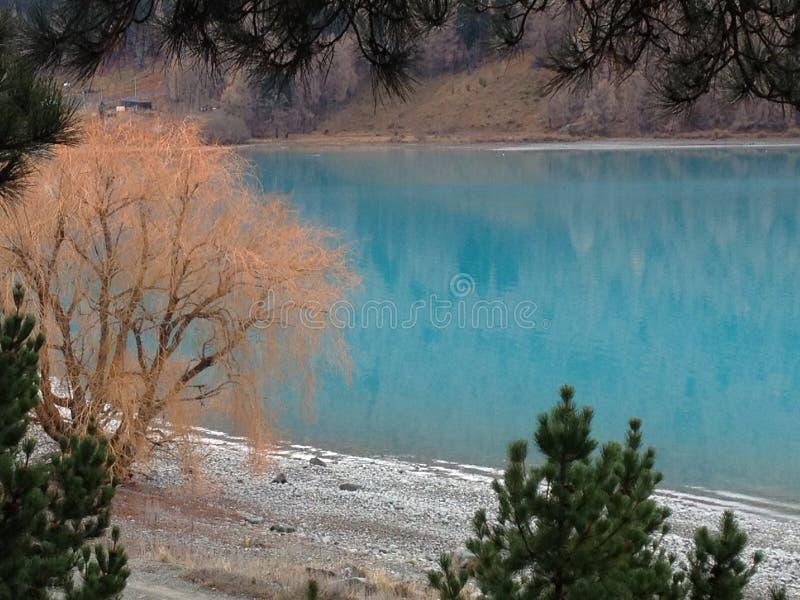 绿松石特卡波湖,新西兰 库存照片