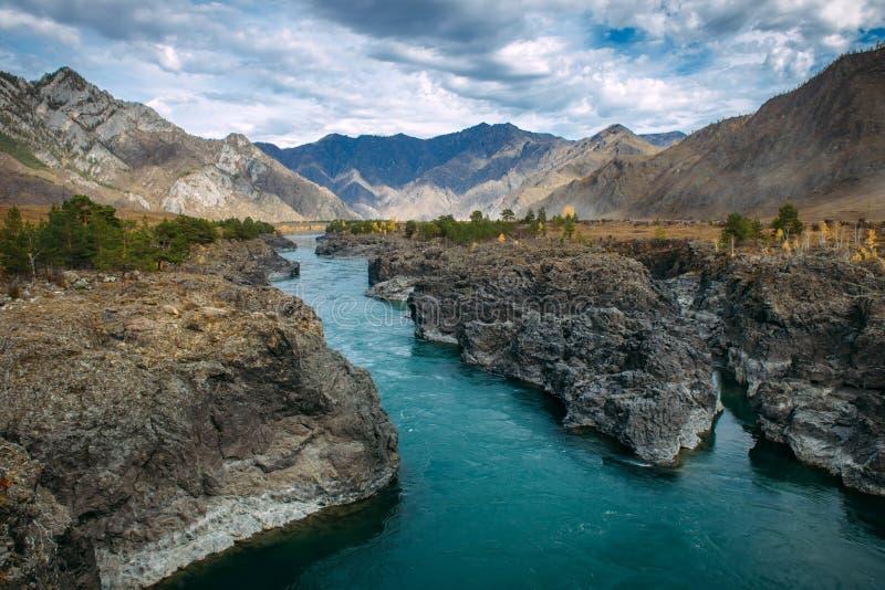 绿松石Katun河在峡谷由高山包围在庄严秋天天空下 一条风雨如磐的山小河跑在中 库存照片