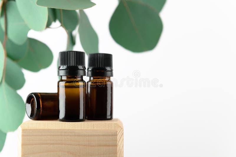 绿桉叶化妆玻璃瓶 木架上无品牌琥珀容器,用于精用按摩油, 图库摄影