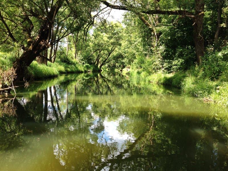 绿河在夏天 免版税库存照片