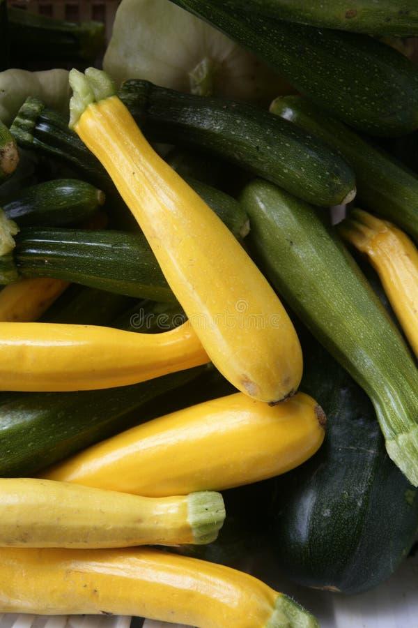 绿皮胡瓜绿色市场黄色 免版税图库摄影