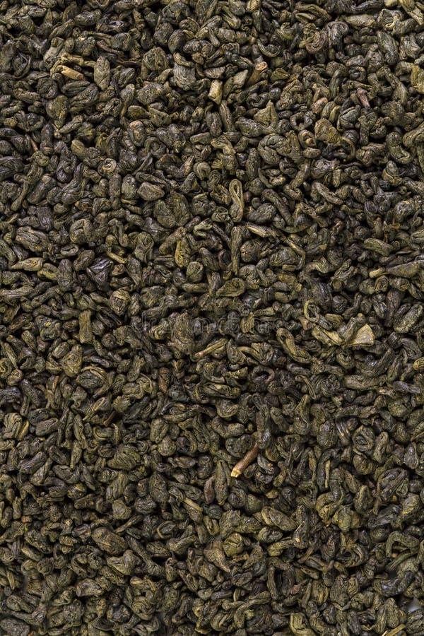 绿色中国火药茶干叶子  免版税库存照片