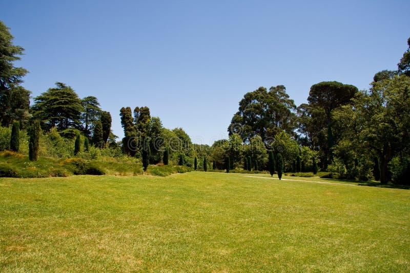 绿色公园 免版税库存图片