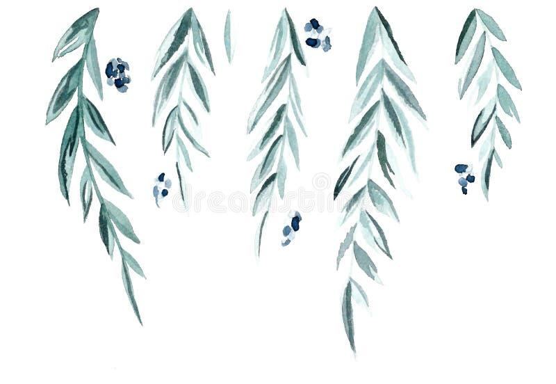 绿色分支和叶子 向量例证