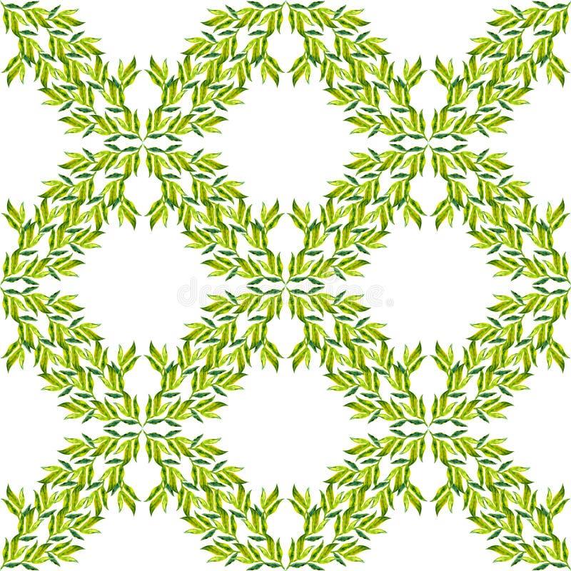 绿色分支在白色backgrou留给geomantic菱形树荫绿色植被自然水彩样式背景被隔绝 库存例证