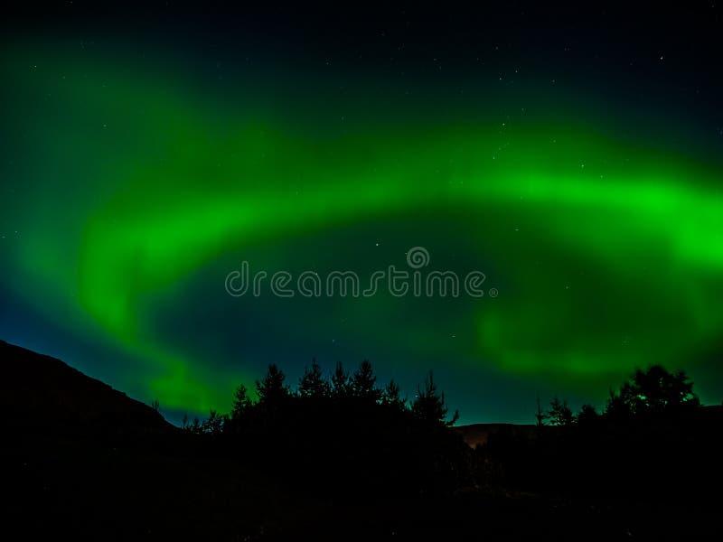 绿色北,极光Borealis,在夜空的光 免版税图库摄影
