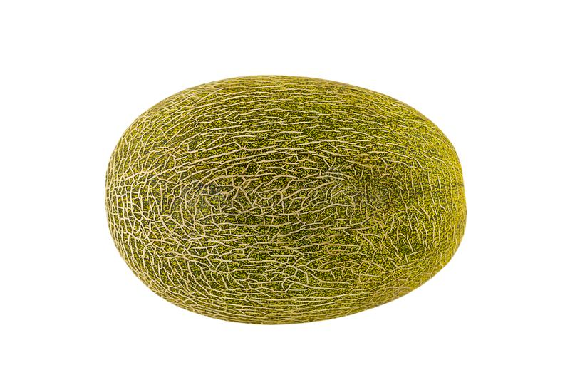 绿色卵形瓜整个在果子板材白色背景被隔绝的,水多的果子基地和圆滑的人 库存照片