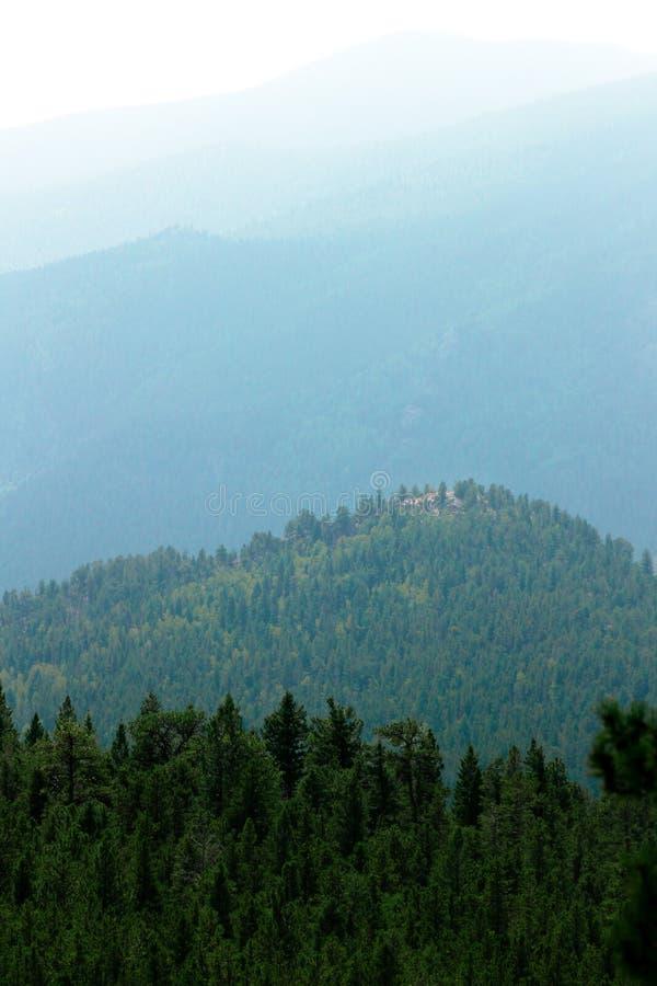 绿色厚实的森林美丽的空中射击小山的 库存图片