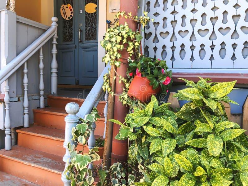 绿色叶子和花反对一个老大厦的窗口在老第比利斯 免版税库存图片