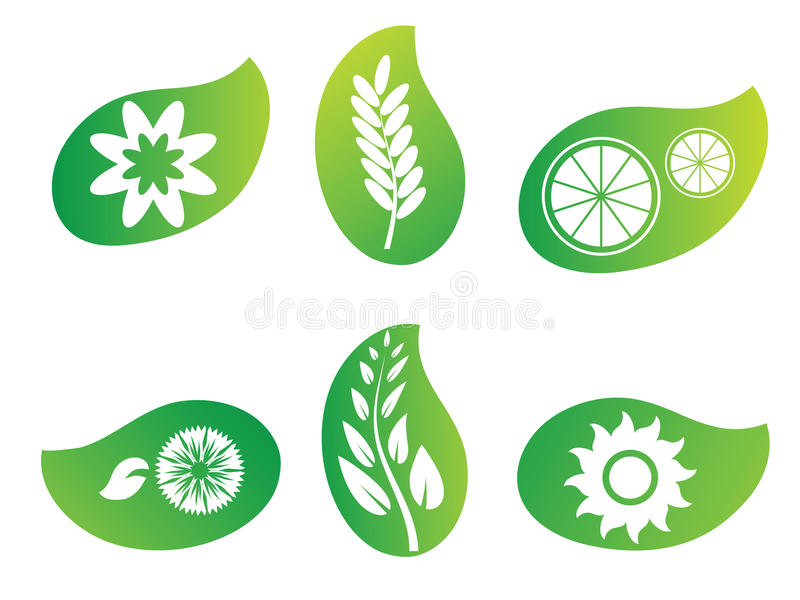 绿色叶子徽标本质 向量例证