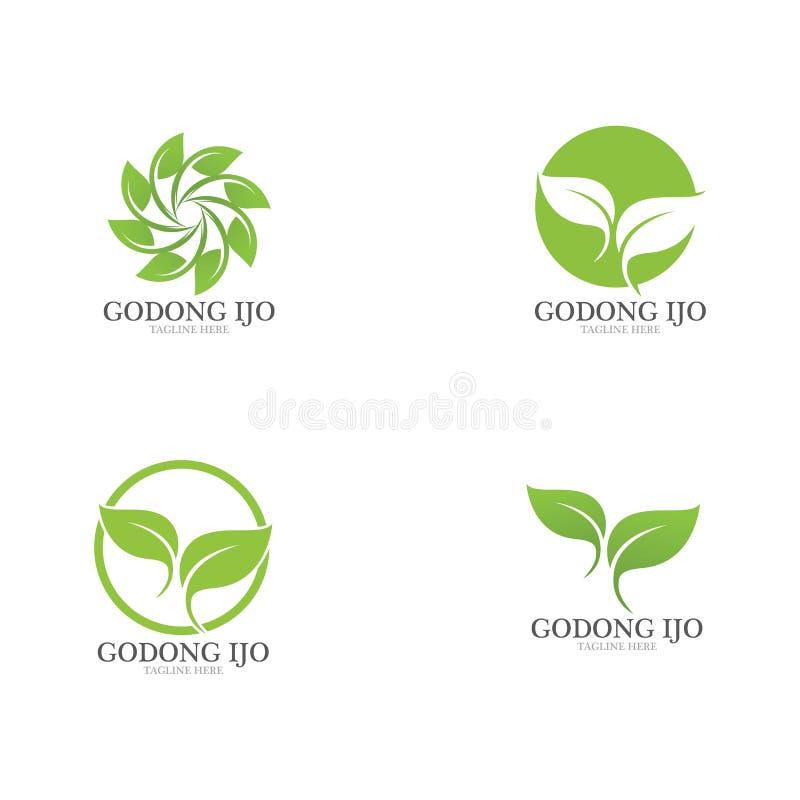 绿色叶子生态商标  向量例证